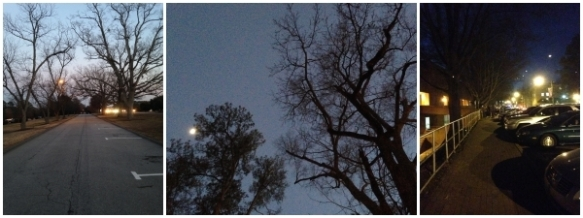 Triptych to an Emotional Breakdown: Pictures from my walk.